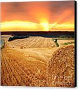 Beautiful Straw Bales Canvas Print by Boon Mee