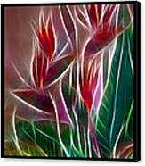 Bird Of Paradise Fractal Canvas Print by Peter Piatt