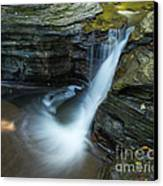 Buttermilk Falls Gorge Trail Canvas Print by John Naegely