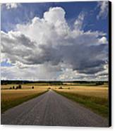 Country Road Canvas Print by Conny Sjostrom