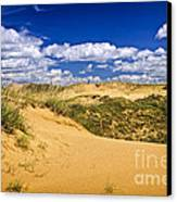 Desert Landscape In Manitoba Canvas Print by Elena Elisseeva