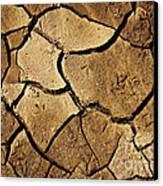 Dry Land Canvas Print by Carlos Caetano