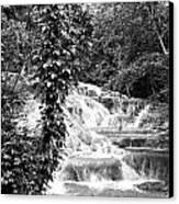 Dunn's River Canvas Print by Thomas Leon
