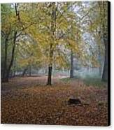 Epping 8 Canvas Print