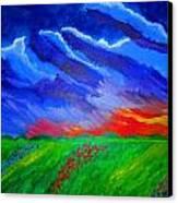 Field Of Flowers Canvas Print by Haleema Nuredeen