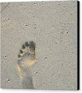 Footprint In Sand On Beach Canvas Print by Sami Sarkis