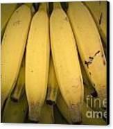 Fresh Bananas On A Street Fair In Brazil. Canvas Print by Ricardo Lisboa
