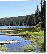 Gold Lake Canvas Print by Tim Rice
