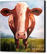 Holy Cow Canvas Print by Paula Marsh