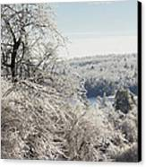 Ice Storm - 2013 Canvas Print by Jim Walker