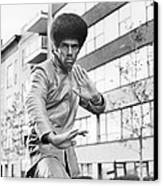 Jim Kelly Canvas Print