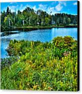 Lake Abanakee In The Adirondacks Canvas Print by David Patterson