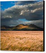 Landscape Of Windy Wheat Field In Front Of Mountain Range With D Canvas Print