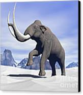 Large Mammoth Walking Slowly Canvas Print by Elena Duvernay
