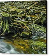 Mountain Stream Canvas Print by Jaroslaw Grudzinski