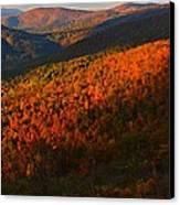Nature's Color Palette Canvas Print by Candice Trimble