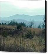 North Ga. Mountains Canvas Print