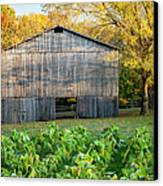 Old Tobacco Barn Canvas Print by Brian Jannsen