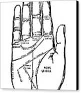 Palmistry Chart, 1885 Canvas Print