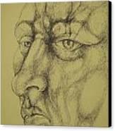 Portrait Canvas Print by Moshfegh Rakhsha