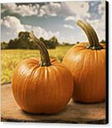 Pumpkins Canvas Print by Amanda Elwell