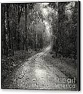 Road Way In Deep Forest Canvas Print