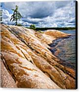 Rocky Shore Of Georgian Bay Canvas Print by Elena Elisseeva