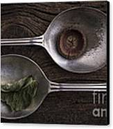 Silver Spoons Canvas Print by Edward Fielding