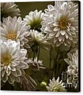 Spring Flowers Canvas Print by Joe McCormack Jr