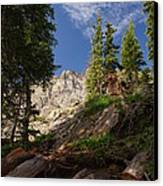 Steep Mountain Hike Canvas Print by Michael J Bauer