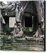 Strangler Fig Tree Roots On Preah Khan Temple Canvas Print