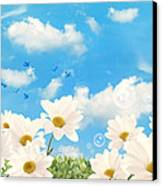 Summer Daisies Canvas Print by Amanda Elwell