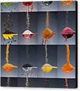 1 Tablespoon Flavor Collage Canvas Print by Steve Gadomski