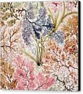 Textile Design Canvas Print