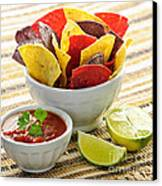Tortilla Chips And Salsa Canvas Print by Elena Elisseeva