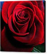 Twilight Rose  Canvas Print by Etti PALITZ