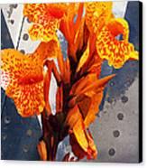 Ventura Flower Canvas Print by Ron Regalado