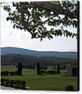 Vineyards In Va - 12124 Canvas Print