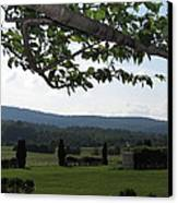 Vineyards In Va - 12125 Canvas Print by DC Photographer