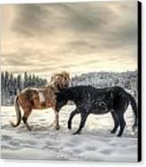 Winter Challenge Canvas Print