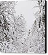 Winter Road Canvas Print by Cheryl Baxter