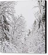Winter Road Canvas Print by Cheryl Baxter