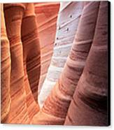 Zebra Canyon  Canvas Print