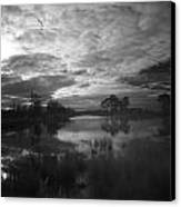 Infrared Picture Of The Nature Area Dwingelderveld In Netherlands Canvas Print by Ronald Jansen