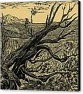 1000 Years Canvas Print by Maria Arango Diener