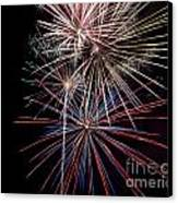 Local Fireworks Canvas Print by Mark Dodd