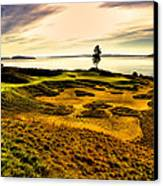 #15 At Chambers Bay Golf Course  Canvas Print by David Patterson
