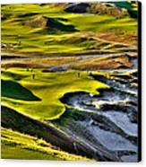 #9 At Chambers Bay Golf Course Canvas Print by David Patterson