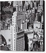 Aerial View Of Sao Paulo Canvas Print