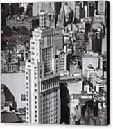 Aerial View Of Sao Paulo Canvas Print by Ricardo Lisboa